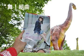 上左右;のんほいパーク(豊橋市大岩町字大穴)。自然史博物館の恐竜像の前で、鴨川君は浅見さんに告白する妄想。そして遊園地ではメリーゴーランドに乗って浅見さんか